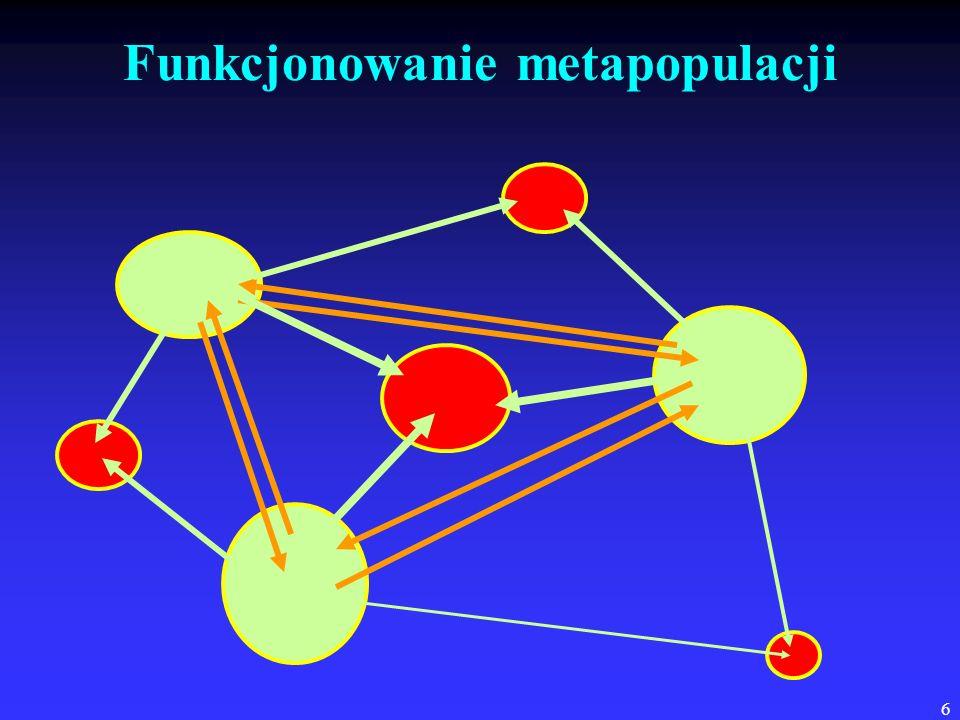 6 Funkcjonowanie metapopulacji