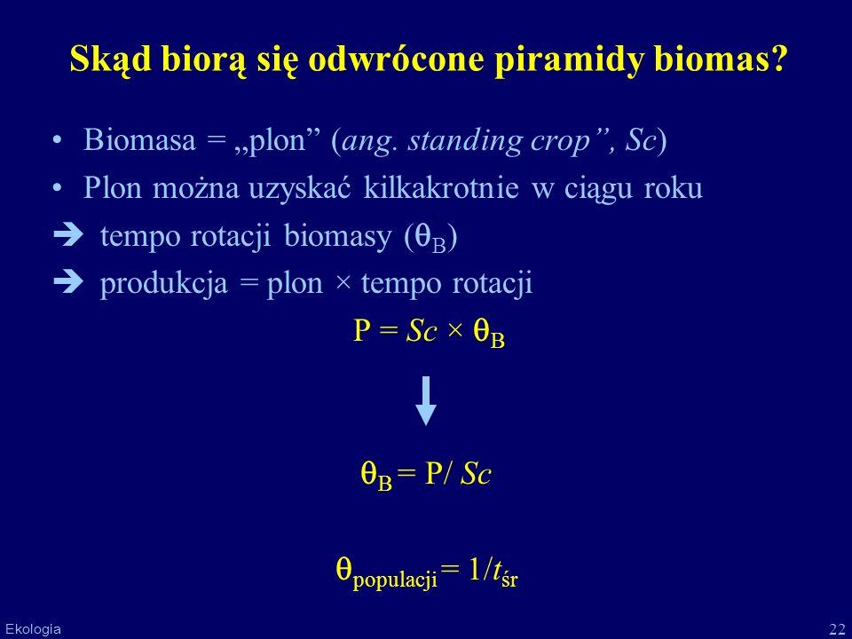 22 Ekologia Skąd biorą się odwrócone piramidy biomas? Biomasa = plon (ang. standing crop, Sc) Plon można uzyskać kilkakrotnie w ciągu roku tempo rotac