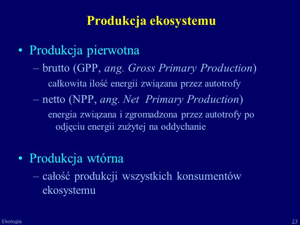 23 Ekologia Produkcja ekosystemu Produkcja pierwotna –brutto (GPP, ang. Gross Primary Production) całkowita ilość energii związana przez autotrofy –ne