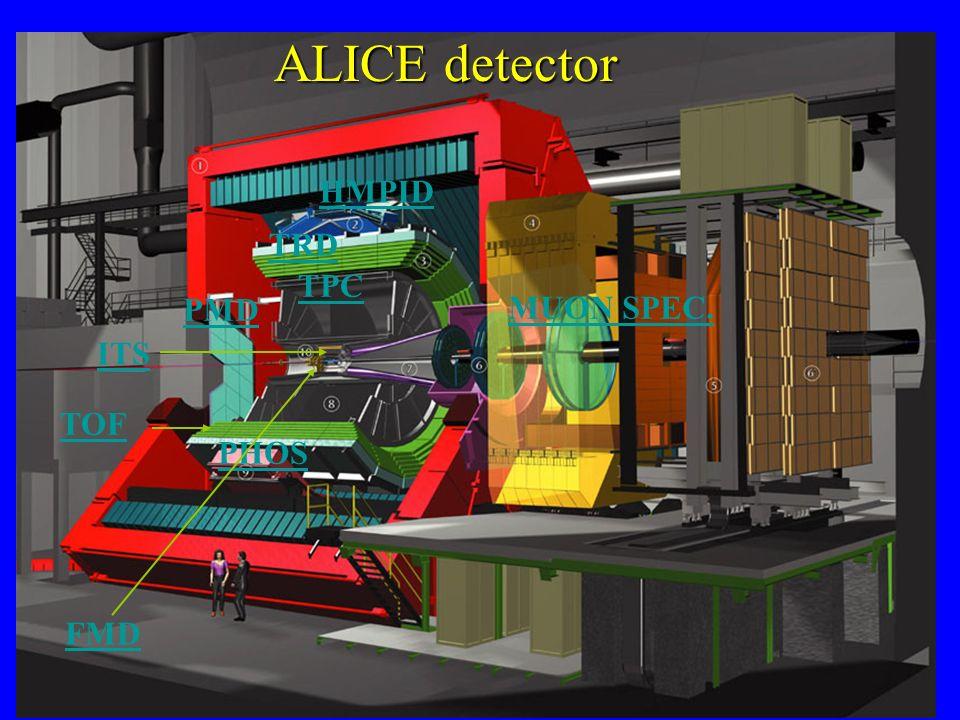 ITS TPC TRD TOF PHOS HMPID MUON SPEC. PMD FMD ALICE detector