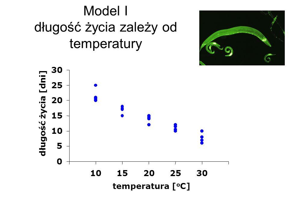 Model I długość życia zależy od temperatury 0 5 10 15 20 25 30 1015202530 temperatura [ o C] długość życia [dni]