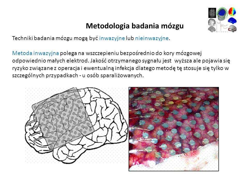 Metodologia badania mózgu Techniki badania mózgu mogą być inwazyjne lub nieinwazyjne. Metoda inwazyjna polega na wszczepieniu bezpośrednio do kory móz