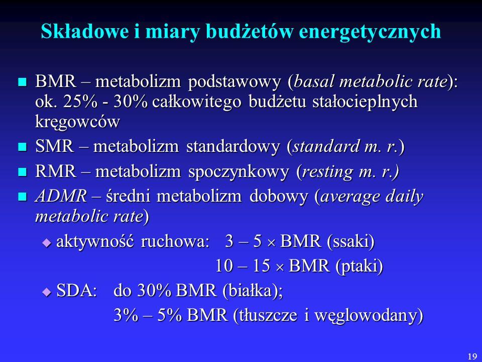 19 Składowe i miary budżetów energetycznych BMR – metabolizm podstawowy (basal metabolic rate): ok. 25% - 30% całkowitego budżetu stałocieplnych kręgo