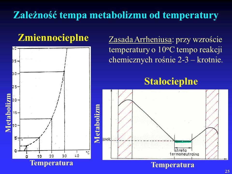 25 Zależność tempa metabolizmu od temperatury Temperatura Metabolizm Zmiennocieplne Temperatura Metabolizm Stałocieplne Zasada Arrheniusa: przy wzrośc