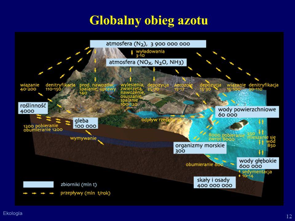 12 Ekologia Globalny obieg azotu