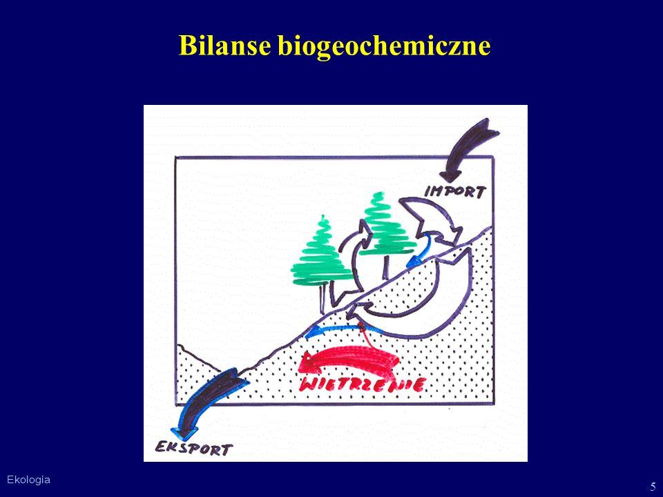 5 Ekologia Bilanse biogeochemiczne