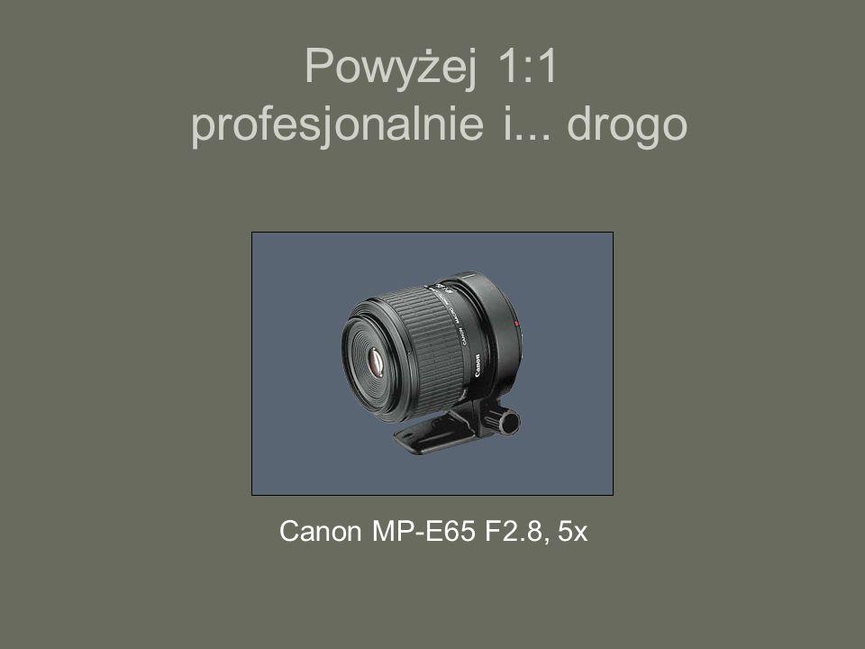 Powyżej 1:1 profesjonalnie i... drogo Canon MP-E65 F2.8, 5x