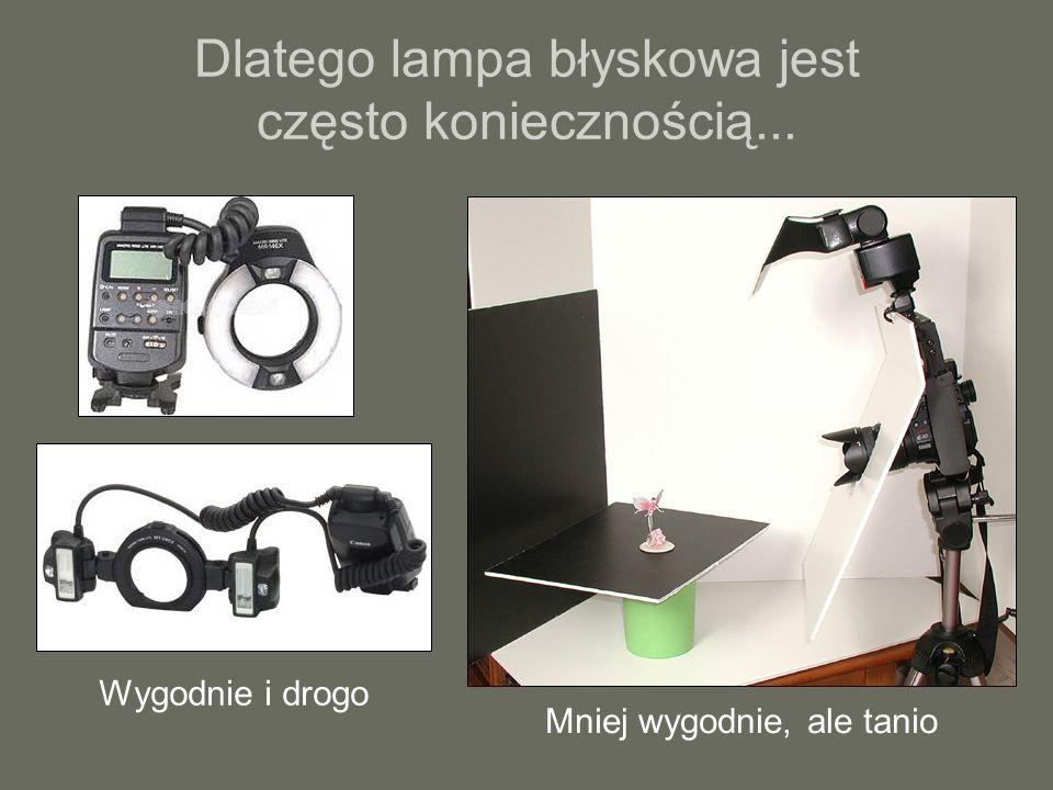 Dlatego lampa błyskowa jest często koniecznością... Wygodnie i drogo Mniej wygodnie, ale tanio