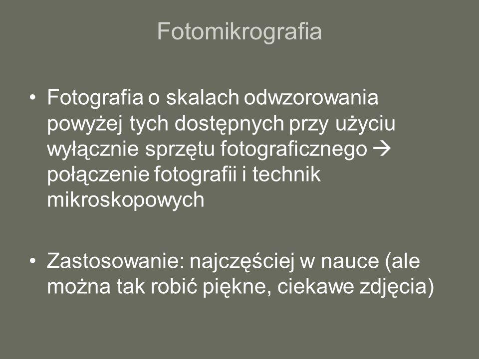 Fotomikrografia Fotografia o skalach odwzorowania powyżej tych dostępnych przy użyciu wyłącznie sprzętu fotograficznego połączenie fotografii i techni