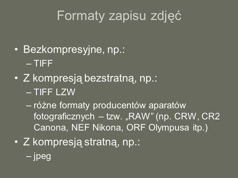 Formaty zapisu zdjęć Bezkompresyjne, np.: –TIFF Z kompresją bezstratną, np.: –TIFF LZW –różne formaty producentów aparatów fotograficznych – tzw. RAW