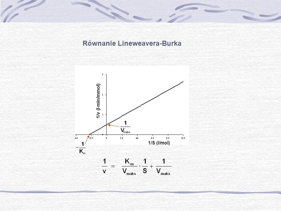 Równanie Lineweavera-Burka 1/v (l·min/mmol) 1/S (l/mol)
