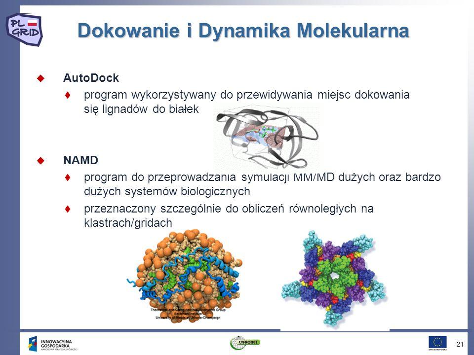 Dokowanie i Dynamika Molekularna AutoDock program wykorzystywany do przewidywania miejsc dokowania się lignadów do białek NAMD program do przeprowadzania symulacji MM/MD dużych oraz bardzo dużych systemów biologicznych przeznaczony szczególnie do obliczeń równoległych na klastrach/gridach 21