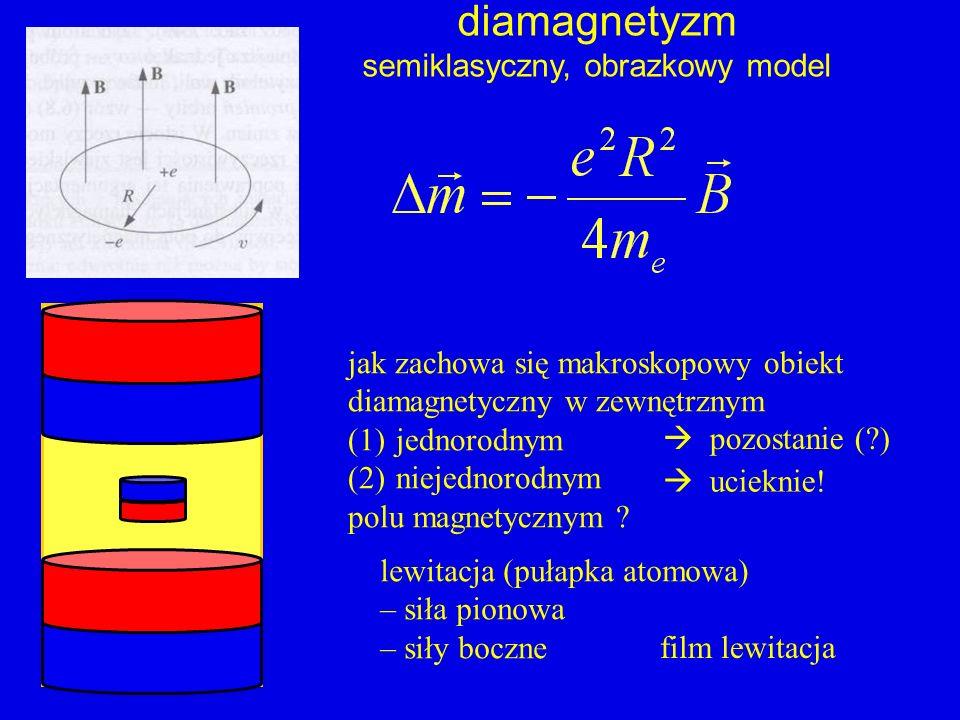 diamagnetyzm semiklasyczny, obrazkowy model jak zachowa się makroskopowy obiekt diamagnetyczny w zewnętrznym (1)jednorodnym (2)niejednorodnym polu mag