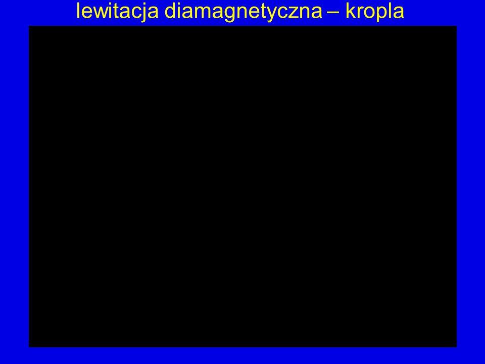lewitacja diamagnetyczna – kropla