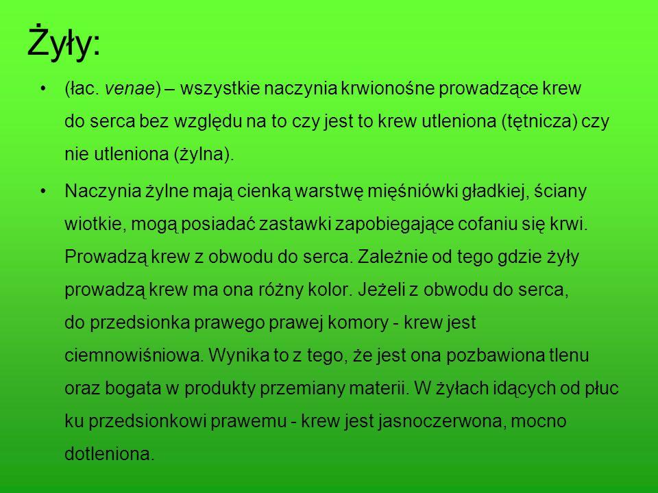 Strony WWW www.zdrowie/gazeta.pl www.wikipedia.pl www.jawiem.pl www.darmowa encyklopedia.pl www.resmedica.pl www.seremet.org