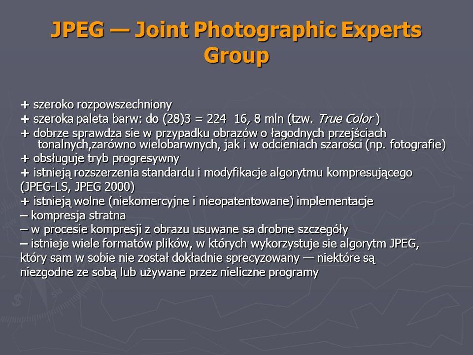 JPEG Joint Photographic Experts Group + szeroko rozpowszechniony + szeroka paleta barw: do (28)3 = 224 16, 8 mln (tzw. True Color ) + dobrze sprawdza