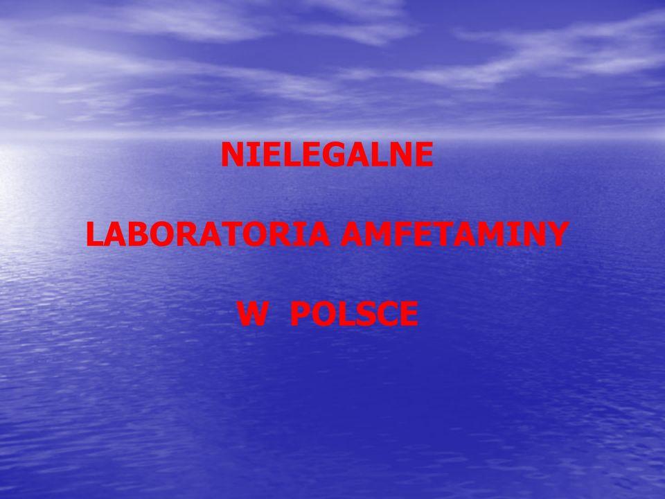 NIELEGALNE LABORATORIA AMFETAMINY W POLSCE