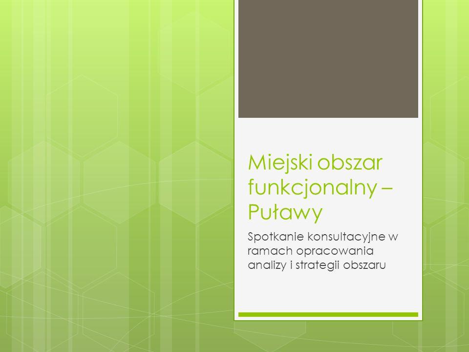 Miejski obszar funkcjonalny – Puławy Spotkanie konsultacyjne w ramach opracowania analizy i strategii obszaru
