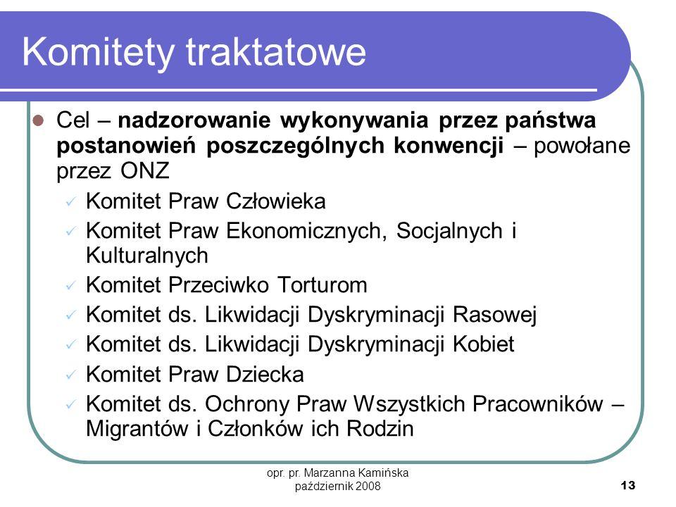 opr. pr. Marzanna Kamińska październik 2008 13 Komitety traktatowe Cel – nadzorowanie wykonywania przez państwa postanowień poszczególnych konwencji –
