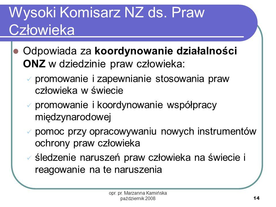 opr. pr. Marzanna Kamińska październik 2008 14 Wysoki Komisarz NZ ds. Praw Człowieka Odpowiada za koordynowanie działalności ONZ w dziedzinie praw czł