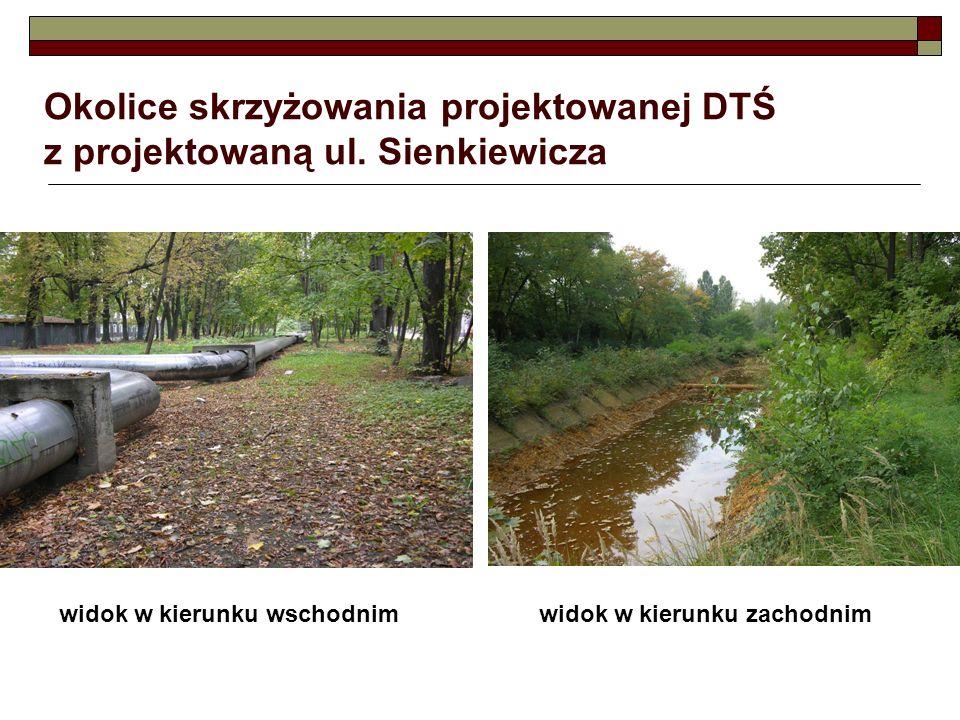 Okolice skrzyżowania projektowanej DTŚ z projektowaną ul. Sienkiewicza widok w kierunku wschodnimwidok w kierunku zachodnim