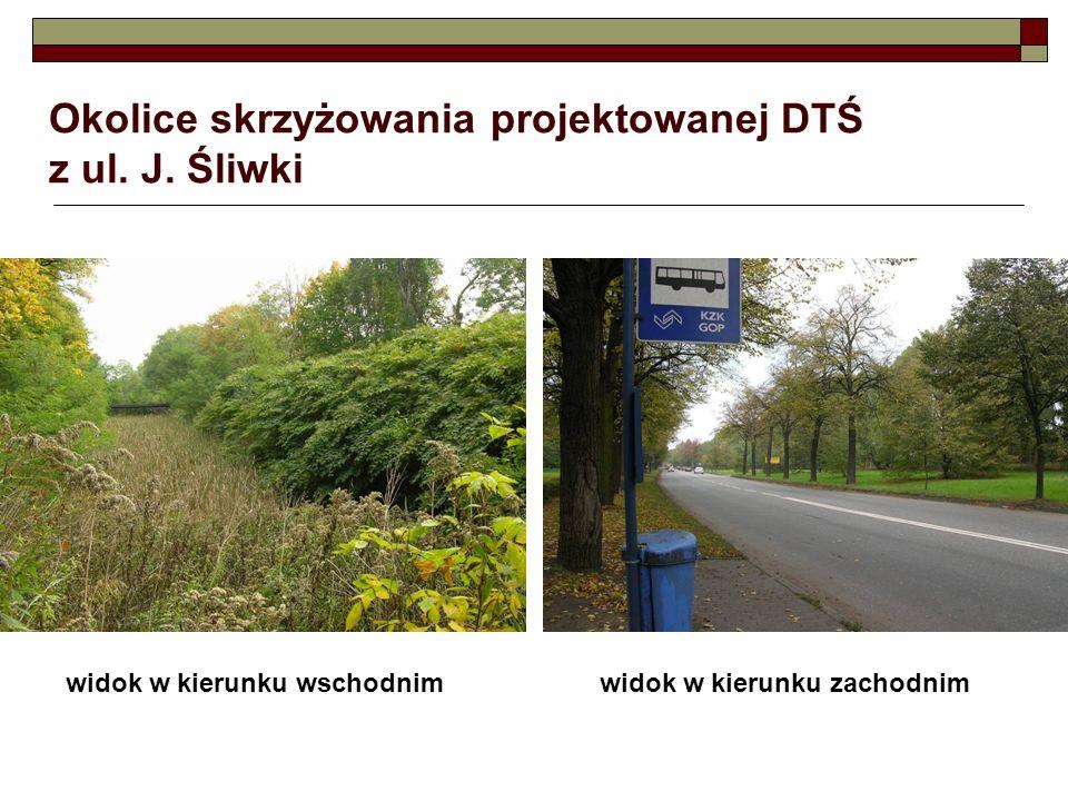 Okolice skrzyżowania projektowanej DTŚ z ul. J. Śliwki widok w kierunku wschodnimwidok w kierunku zachodnim