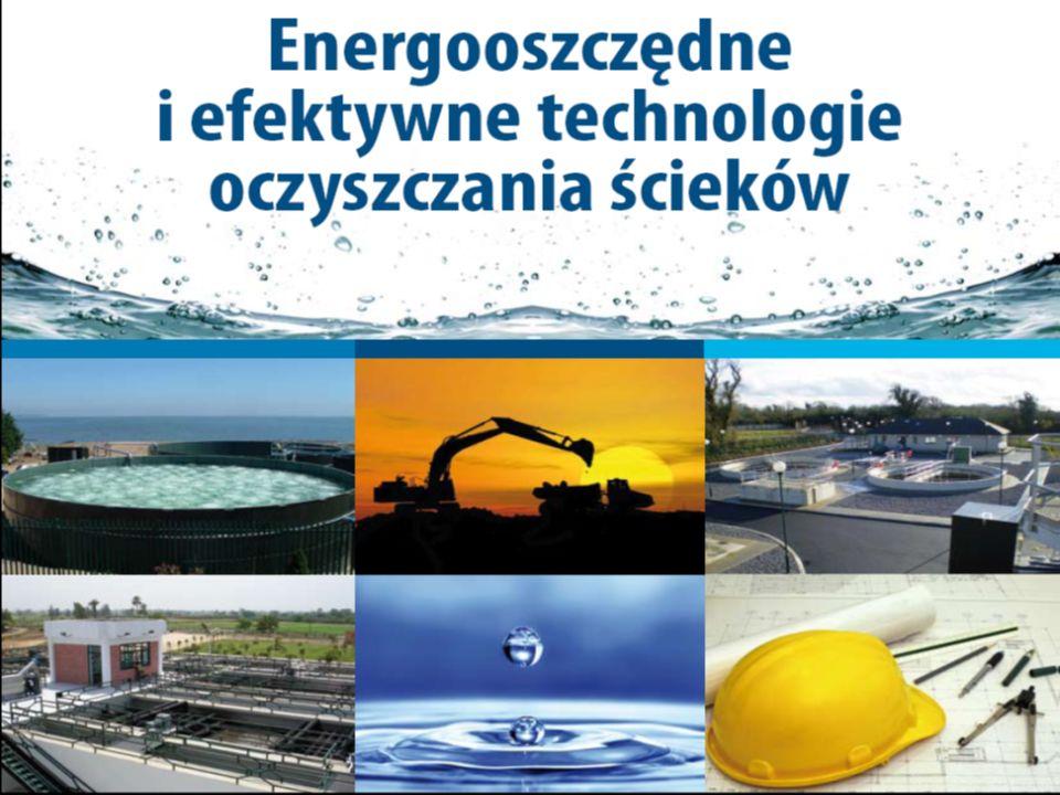 Budowa przydomowych i lokalnych oczyszczalni ścieków w oparciu o platformę PPP Henryk Świtowski PRO-ECO INVEST S.A.