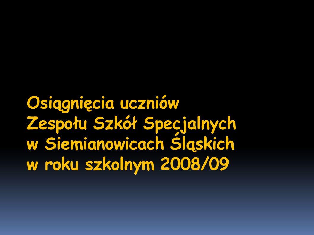 Osiągnięcia uczniów Zespołu Szkół Specjalnych w Siemianowicach Śląskich w roku szkolnym 2008/09