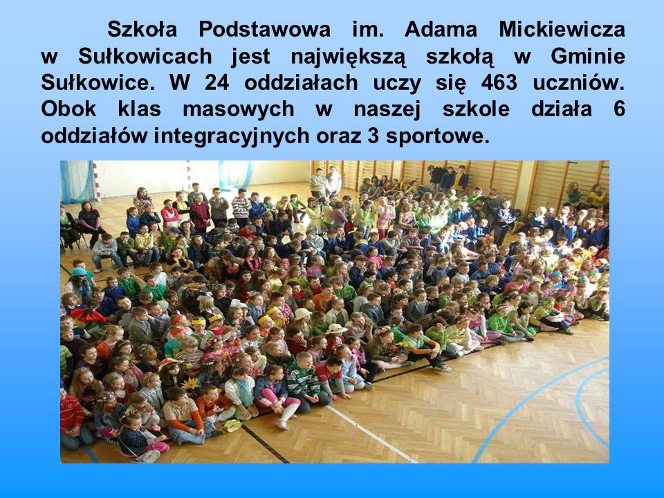 Szkoła Podstawowa im. Adama Mickiewicza w Sułkowicach jest największą szkołą w Gminie Sułkowice. W 24 oddziałach uczy się 463 uczniów. Obok klas masow