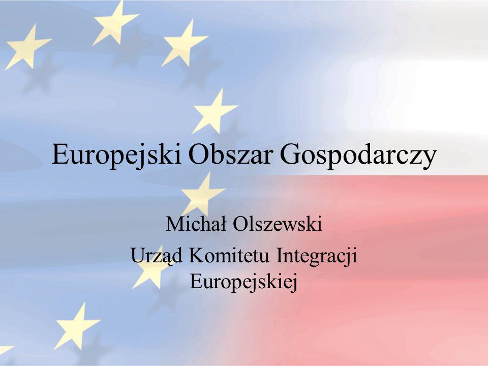 Europejski Obszar Gospodarczy Michał Olszewski Urząd Komitetu Integracji Europejskiej