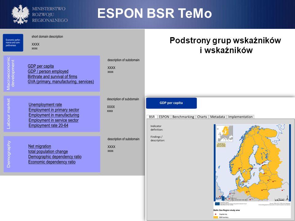 Podstrony grup wskaźników i wskaźników ESPON BSR TeMo