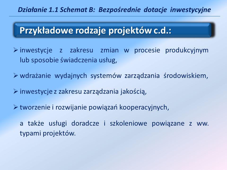 Działanie 1.1 Schemat B: Bezpośrednie dotacje inwestycyjne inwestycje z zakresu zmian w procesie produkcyjnym lub sposobie świadczenia usług, wdrażani