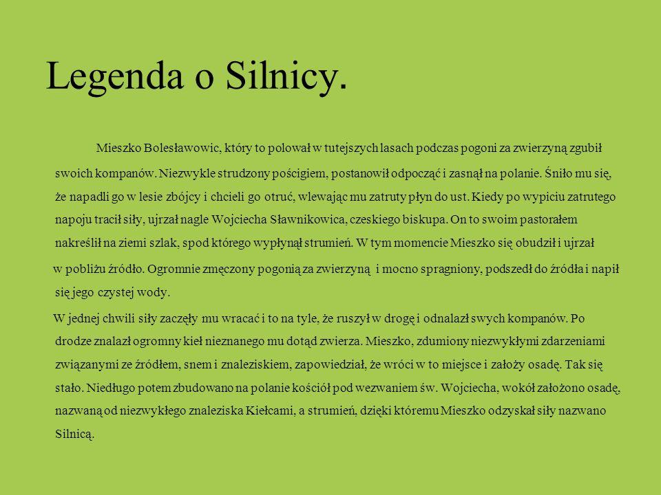 Legenda o Silnicy. Mieszko Bolesławowic, który to polował w tutejszych lasach podczas pogoni za zwierzyną zgubił swoich kompanów. Niezwykle strudzony