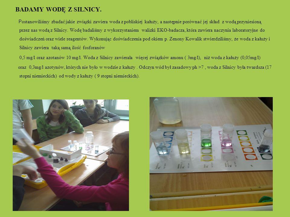 BADAMY WODĘ Z SILNICY. P ostanowiliśmy zbadać jakie związki zawiera woda z pobliskiej kałuży, a następnie porównać jej skład z wodą przyniesioną przez