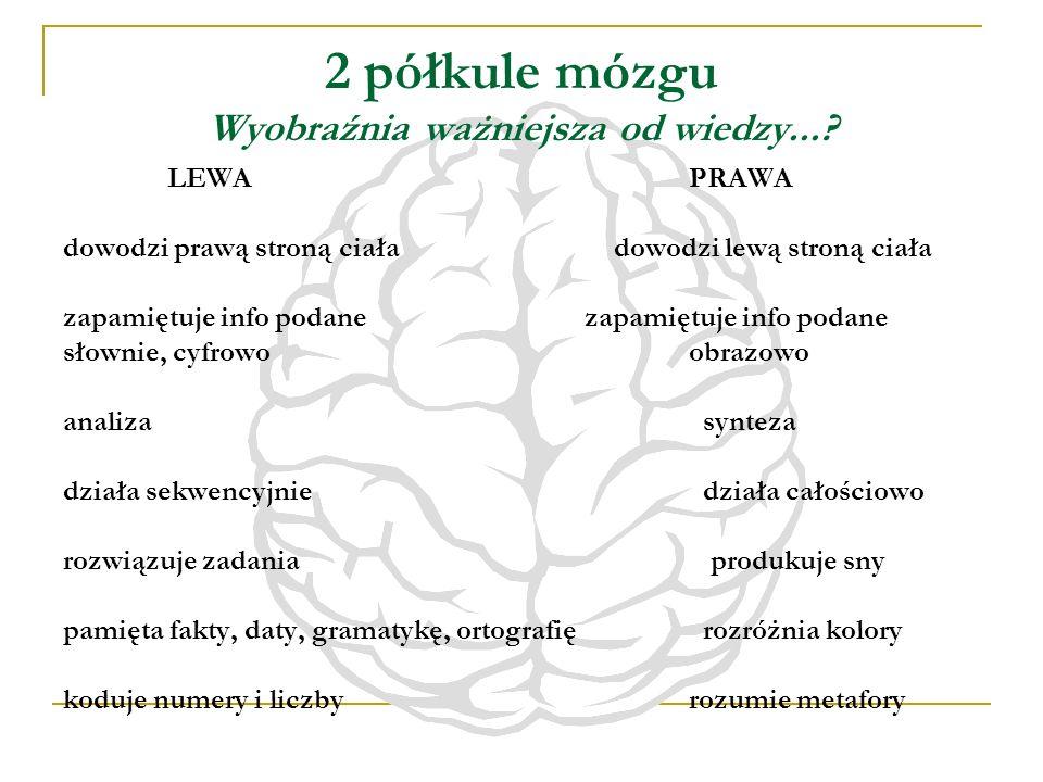 2 półkule mózgu Wyobraźnia ważniejsza od wiedzy...? LEWAPRAWA dowodzi prawą stroną ciała dowodzi lewą stroną ciałazapamiętuje info podane słownie, cyf