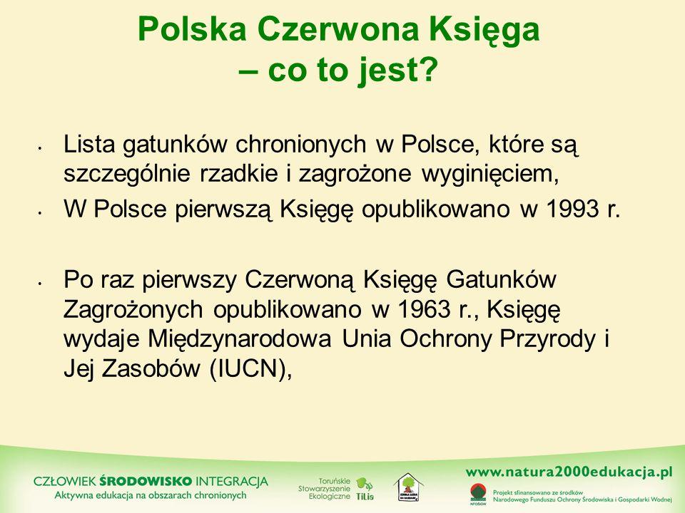 Polska Czerwona Księga – co to jest? Lista gatunków chronionych w Polsce, które są szczególnie rzadkie i zagrożone wyginięciem, W Polsce pierwszą Księ