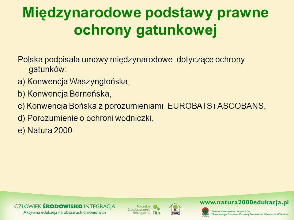 Międzynarodowe podstawy prawne ochrony gatunkowej Polska podpisała umowy międzynarodowe dotyczące ochrony gatunków: a) Konwencja Waszyngtońska, b) Kon