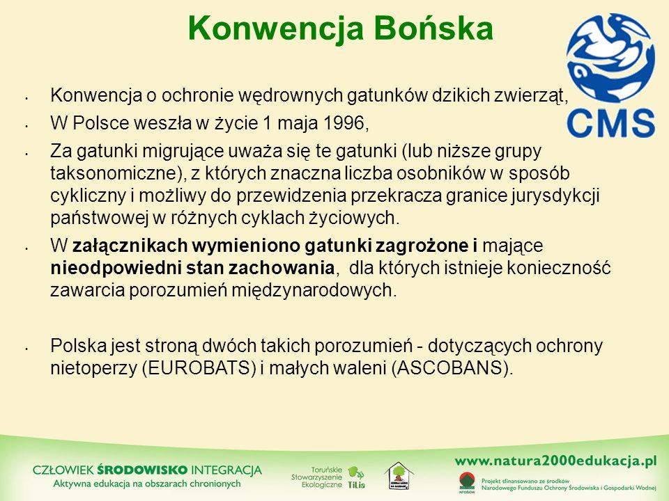 Konwencja Bońska Konwencja o ochronie wędrownych gatunków dzikich zwierząt, W Polsce weszła w życie 1 maja 1996, Za gatunki migrujące uważa się te gat
