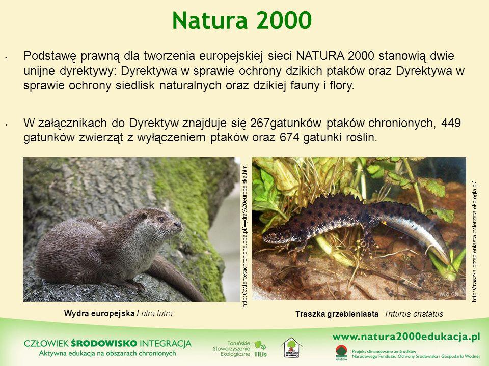 Podstawę prawną dla tworzenia europejskiej sieci NATURA 2000 stanowią dwie unijne dyrektywy: Dyrektywa w sprawie ochrony dzikich ptaków oraz Dyrektywa