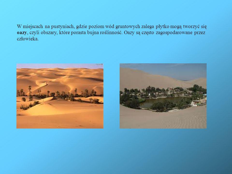W miejscach na pustyniach, gdzie poziom wód gruntowych zalega płytko mogą tworzyć się oazy, czyli obszary, które porasta bujna roślinność. Oazy są czę