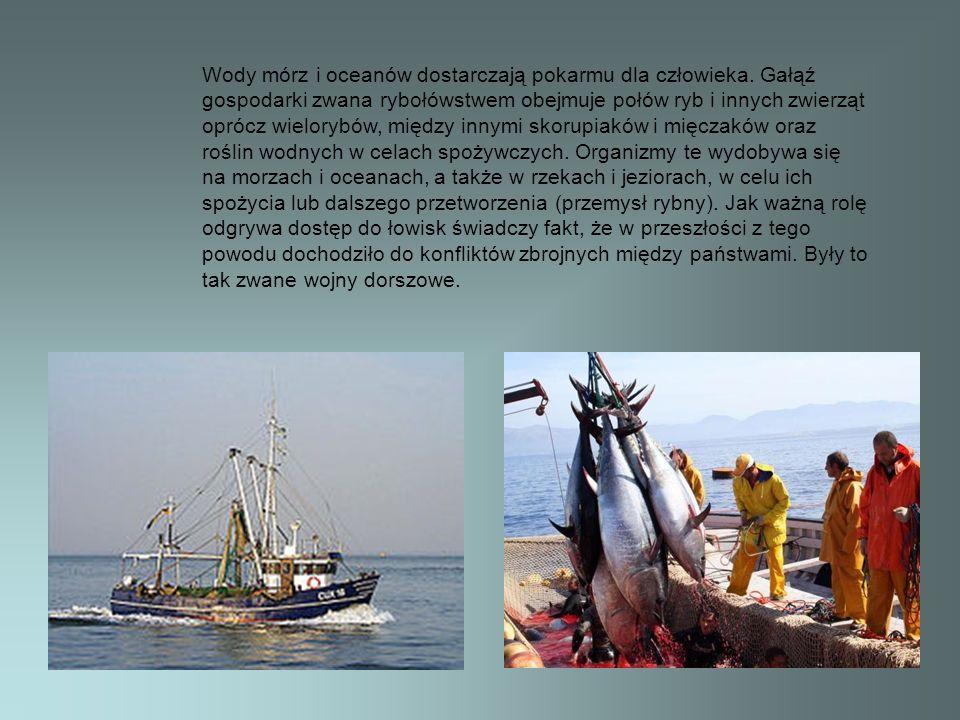Wody mórz i oceanów dostarczają pokarmu dla człowieka. Gałąź gospodarki zwana rybołówstwem obejmuje połów ryb i innych zwierząt oprócz wielorybów, mię