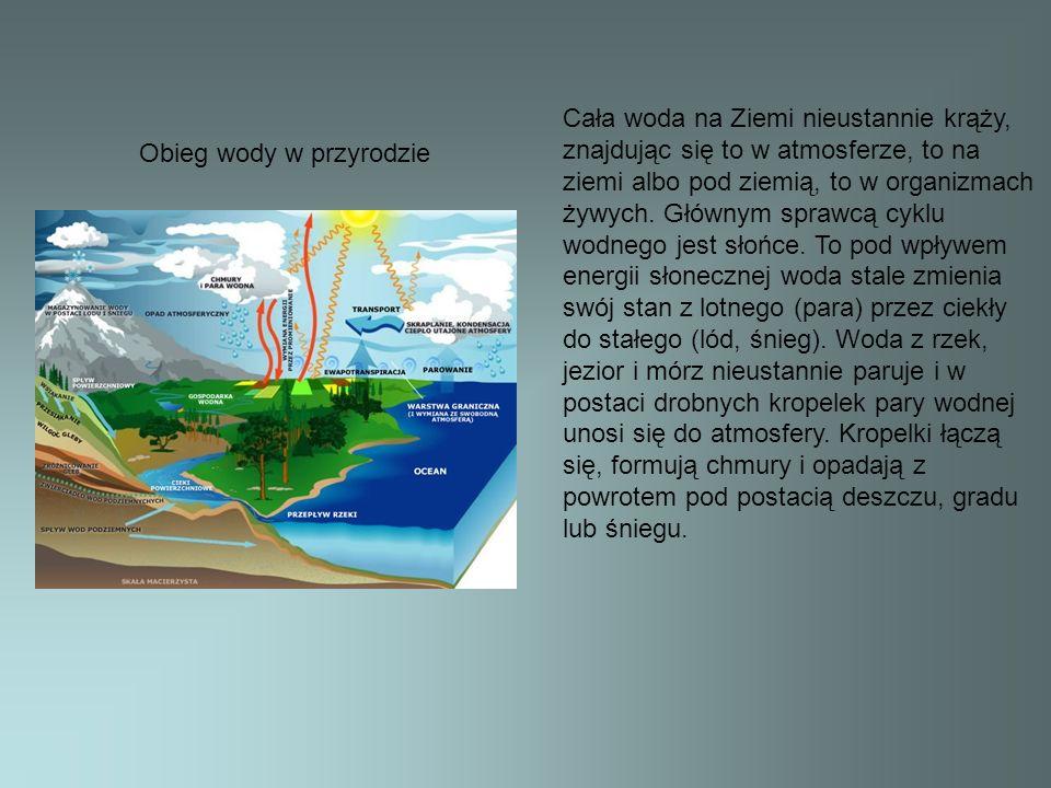 Obieg wody w przyrodzie Cała woda na Ziemi nieustannie krąży, znajdując się to w atmosferze, to na ziemi albo pod ziemią, to w organizmach żywych. Głó