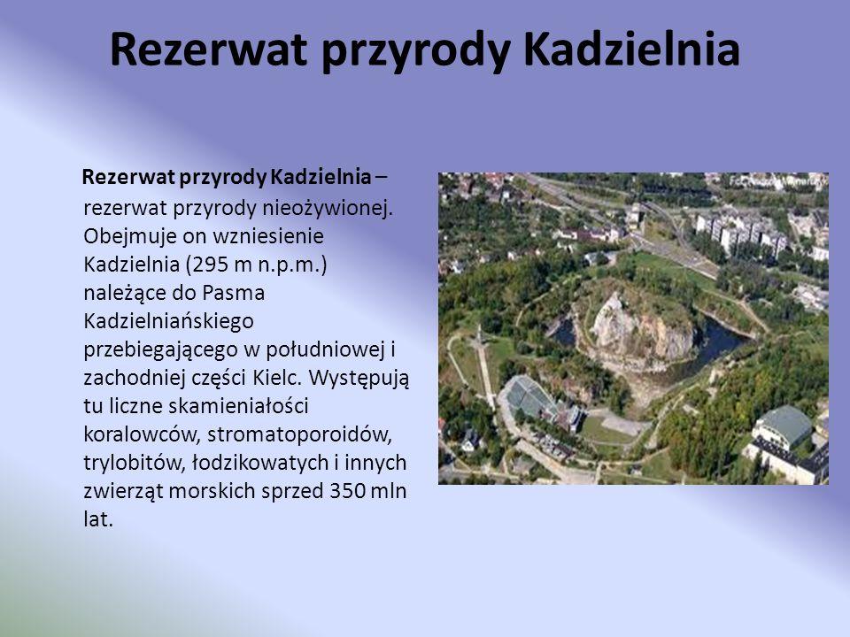 Rezerwat przyrody Kadzielnia Rezerwat przyrody Kadzielnia – rezerwat przyrody nieożywionej. Obejmuje on wzniesienie Kadzielnia (295 m n.p.m.) należące