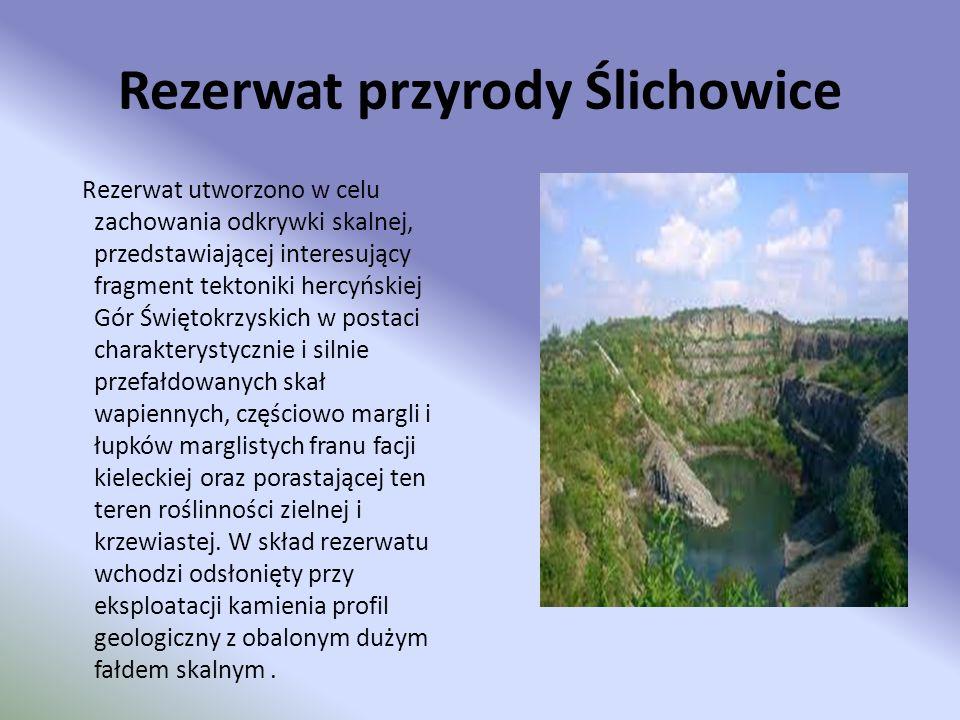 Rezerwat przyrody Ślichowice Rezerwat utworzono w celu zachowania odkrywki skalnej, przedstawiającej interesujący fragment tektoniki hercyńskiej Gór Ś
