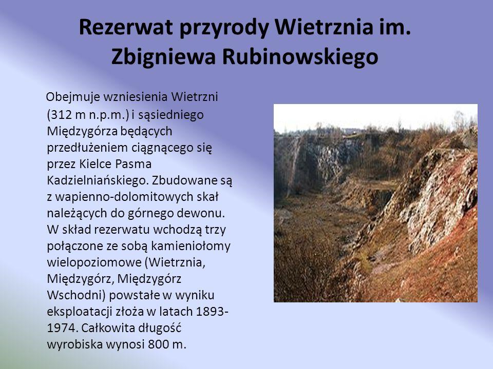 Rezerwat przyrody Wietrznia im. Zbigniewa Rubinowskiego Obejmuje wzniesienia Wietrzni (312 m n.p.m.) i sąsiedniego Międzygórza będących przedłużeniem
