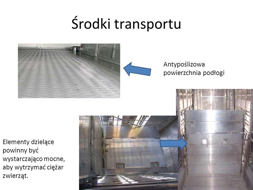 Środki transportu Antypoślizowa powierzchnia podłogi Elementy dzielące powinny być wystarczająco mocne, aby wytrzymać ciężar zwierząt.