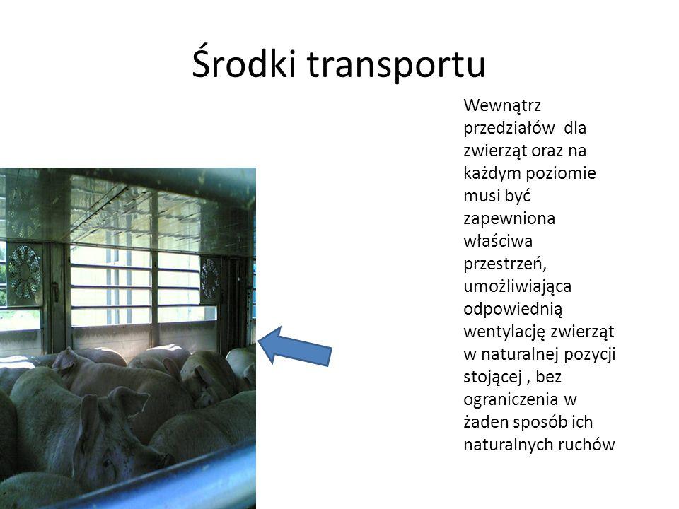 Środki transportu Wewnątrz przedziałów dla zwierząt oraz na każdym poziomie musi być zapewniona właściwa przestrzeń, umożliwiająca odpowiednią wentyla
