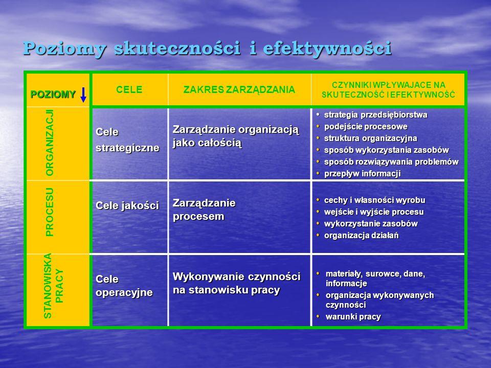 Efektywność Rozpatrywana jest zwykle na trzech poziomach : Organizacji – strategia, struktury, sposób wykorzystania zasobów Organizacji – strategia, s