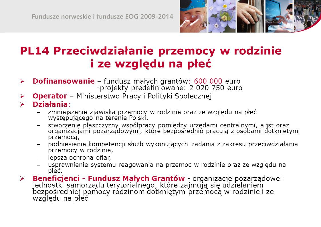 PL14 Przeciwdziałanie przemocy w rodzinie i ze względu na płeć Dofinansowanie – fundusz małych grantów: 600 000 euro -projekty predefiniowane: 2 020 7