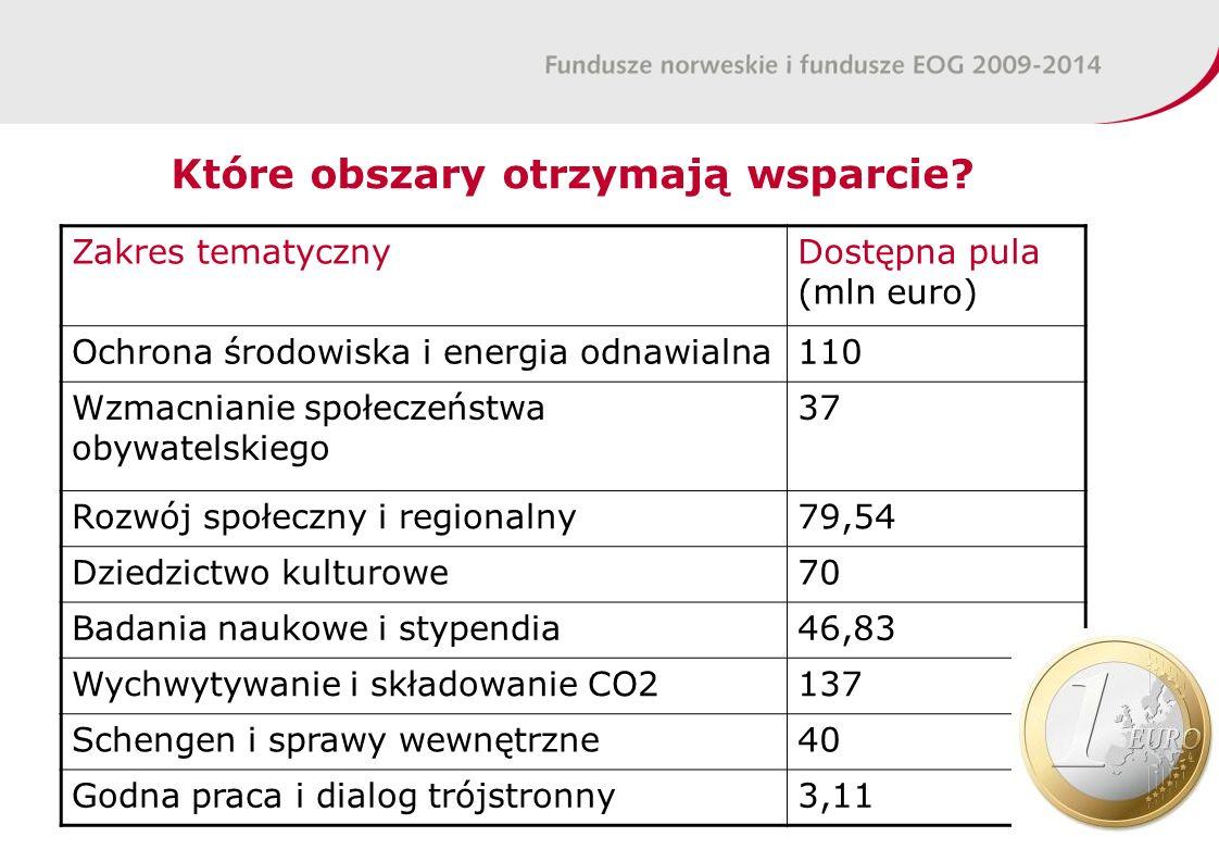 Które obszary otrzymają wsparcie? Zakres tematycznyDostępna pula (mln euro) Ochrona środowiska i energia odnawialna110 Wzmacnianie społeczeństwa obywa